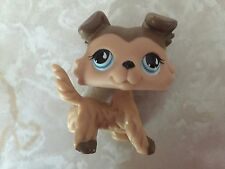 Littlest Pet Shop RARE Collie Dog Puppy #893 Tear Tan Cream Brown Mocha Blue LPS