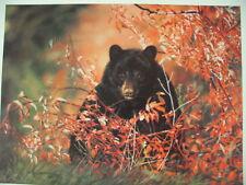 """Lesley Harrison """"Berries,Berries,Berries"""" - Black Bear  S/N Limited Edition"""