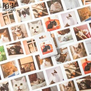 Cat Family Deco Stickers 45pc Mo Card planner journal diary cute kitty sticker