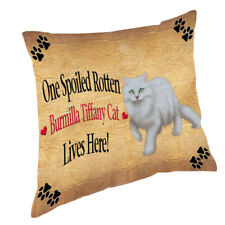 Burmilla Tiffany Spoiled Rotten Cat Throw Pillow 14x14
