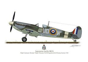Supermarine Spitfire Aircraft Profile Art A3 Paddy Finucane Print WW2