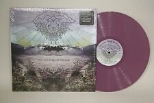 "Blessed Feathers- There Will Be No Sad Tomorrow- 12"" Vinyl LP- B316"