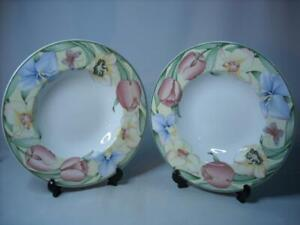 Two of Villeroy & Boch CANARI SOUP BOWL Dishwasher Safe