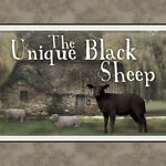 The Unique Black Sheep