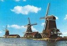 Ak-groeten van de Zaanse Schans. países Bajos-Holland-molinos de viento
