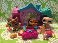 Littlest Pet Shop Owl 673,Fox 674 & Dachshund 675,Trainin' Park pets Authentic