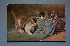 R&L Postcard: 1905 Hildesheimer, Cats Kittens Snail