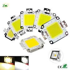 LED SMD Chip 10W 20W 30W 50W 100W Lampada Proiettore Spotlight Bulb Cob Bead