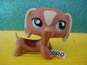 ORIGINAL Littlest Pet Shop Dachshund Dog #1631