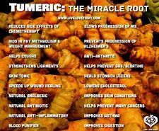 15 or 16 Turmeric Roots ,Whole,Raw ,Organic  Juice it,brew it or plant it.