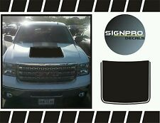 Sport Hood Stripe Decal Graphic fits 2009-2014 Ford F150 FX4 Multiple Colors USA