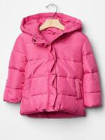 Baby GAP Girls NEW Size 18-24 Mo PINK Ruffle Trim Puffer Jacket Coat $78