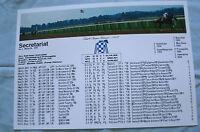 SECRETARIAT Triple Crown Lifteime Racing Record Print