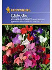 Kiepenkerl  Edelwicke Mischung 788  Kletterpflanze Samen Blumen