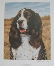 """Field Companion - Springer Spaniel"" by Stephen P. Hamrick 962/4000, signed"