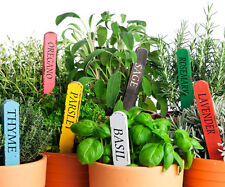 New listing Aromatic culinary herbs and spices 20 different types Lot 1