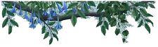 Blue Flower Border Wall Decal Sticker