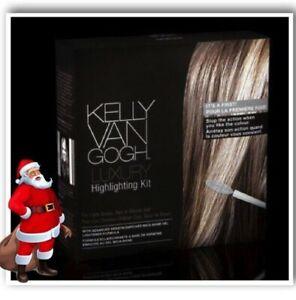 Highlighting Luxury Kit 9pc. Kelly Van Gogh Light Brown RED or Blonde Hair 273