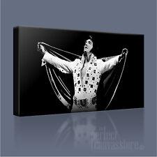 Elvis Presley Rock 'n' Roll legenda splendida stampa art. a iconica ART Williams