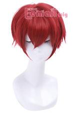 The Ranma 1/2 25cm Ranma Drak Red Cosplay Full Wig Short Straight Hair Wigs