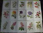 15 Ancienne Affiches Scolaire Botanique 1972 Clematis,Pivoine,Cistus,Skimmia