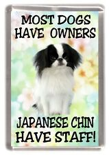 """Japanese Chin Fridge Magnet """"Most Dogs Have Owners Japanese Chin Have Staff"""""""