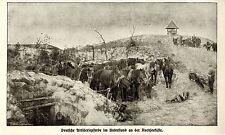 Belgien * Artillerie-Pferdeunterstand an der Nordseeküste * Bilddokument 1914