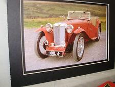1946 MG TC Midget  60th Anniversary Exhibit Color Poster Automotive Museum