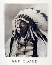 Indian Chief Red Cloud Colorado Native American Art Print Poster (16x20)