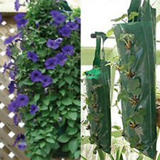 Hanging Planter Strawberry Hanging Flowers Bedding Plant Bag Plants Flowers 12