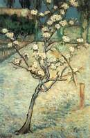 Photo Print Blossoming Pear Tree Gogh, Vincent Van - in various sizes jwg-21066