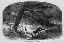 FOX SEARCHING FOR FOOD, WOODLANDS, THE POACHER, TRAPPING FOX, ANTIQUE ENGRAVING