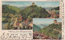 Gruss aus Bad Ziegenrück AK 1902 Mehrbild Thüringen 1702299