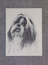 Shih Tzu Pen and Ink Stationary Cards, Note Cards, Greeting Cards. 10 pack.