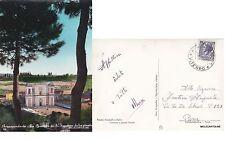# ACQUAPENDENTE: LA BASILICA DI S. SEPOLCRO DALLA PINETA  1960