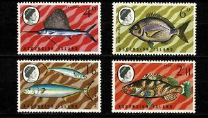 U0142 ASCENSION ISLAND 1969 Fish  MNH