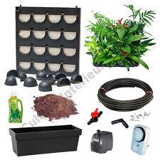 Pack Flowall Mini Garden Noir avec plantes d'intérieur (kit mur végétal)