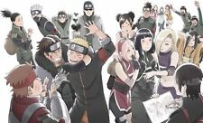 New THE LAST NARUTO THE MOVIE Limited Edition DVD 2 CD Booklet Japan ANZB-11371
