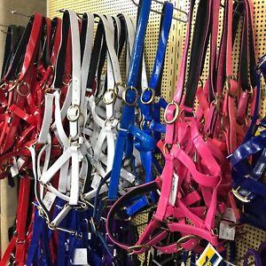 """Horse Headstall Halter In 1"""" PVC ~ Brassed Fittings~ Pony Cob Full  X-Full"""