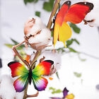 12pcs 3D Butterfly Wall Stickers Rainbow Art Removable Decals Home Decorations