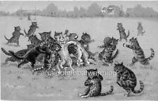 Print 1910s Cats Playing Rugby
