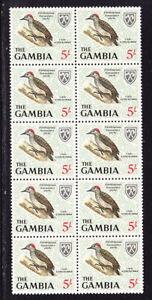 Gambia 1966 - 5s. Little Woodpecker Block 10 MNH