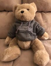 "Aeropostale Stuffed Teddy Bear 12"" Plush Doll  w Hoodie Cuddly Soft Toy"