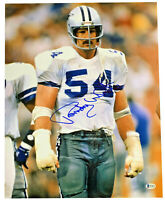 Randy White Signed 16x20 Photo BECKETT COA NFL HOF Dallas Cowboys
