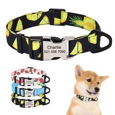 Personalized Dog Collars with Fruit Pattern Custom Engraved Nameplate ID Tag S-L