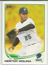 Nestor Molina White Sox 2013 Topps Pro Debut Minor League Card
