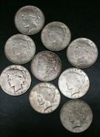 Morgan Peace Silver Dollar Lot Of Nine Coins 1 Morgan 8 Peace 1921 1922 1923