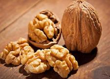 Natural Walnuts 1kg Premium Quality Best Shelled