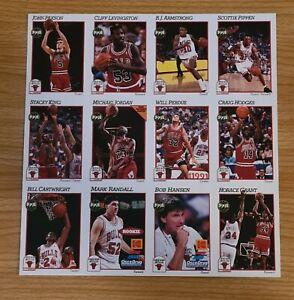 Michael Jordan 91-92 Hoops Team Night Sheet  *RARE*