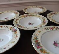 Set of 12 Vintage Floral Pale Yellow Gold Trimmed Coalport Large Soup Bowls 8551